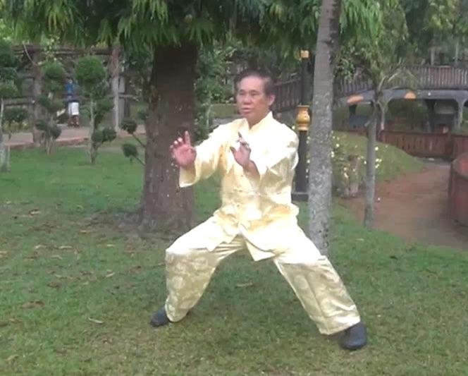 Southern Shaolin Kungfu