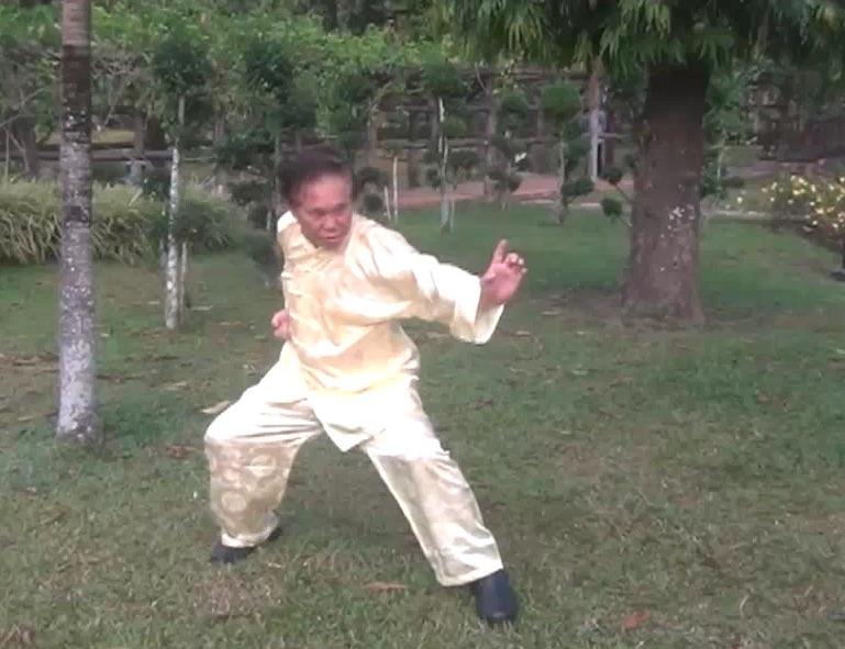 Shaolin Tiger Crane