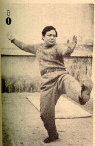 Sifu Chen Tin Hung