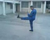 Cross Hands Thrust Kick (2)