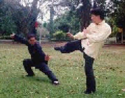 Taijiquan is basically a martial art