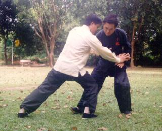Taijiquan Shoulder Throw
