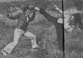 A heroine executing a Bruce Lee's kick