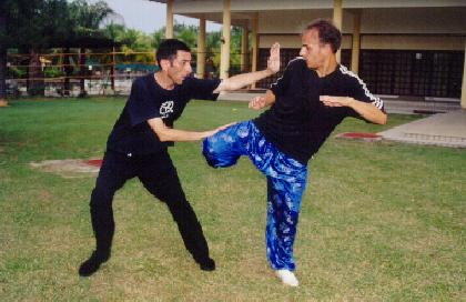 Combat Application of Taijiquan