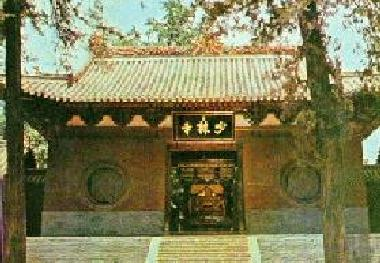 "the main characteristics of the shaolin temple They are da jiang jun, ""great general tree"", and er jiang jun, ""second  many  of its movements take advantage of its qualities, like the fact that it can be held."