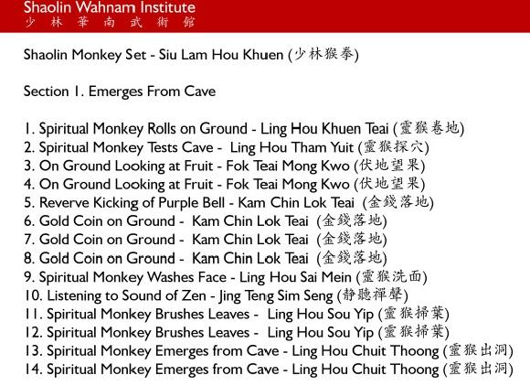 Shaolin Monkey Set Chinese Names