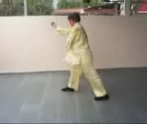 Shaolin Monkey Set