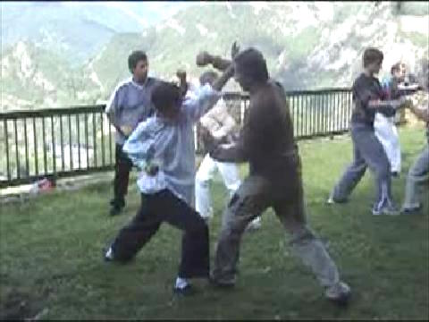 Combat Application in Shaolin Kung Fu