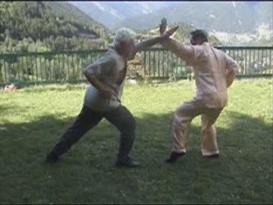 Shaolin Combat Sequences