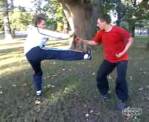 Free Sparring Shaolin Kung Fu
