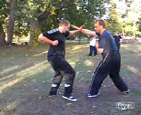 Shaolin Kungfu free sparring
