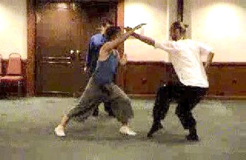 Shaolin Kung Combat Sequences