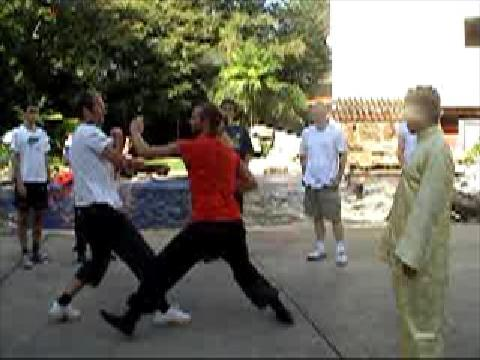 Shaolin Kung Fu free sparring