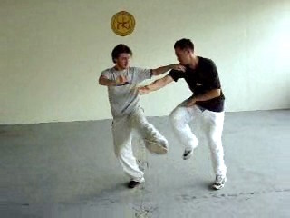 Combat Sequences of Shaolin Tantui