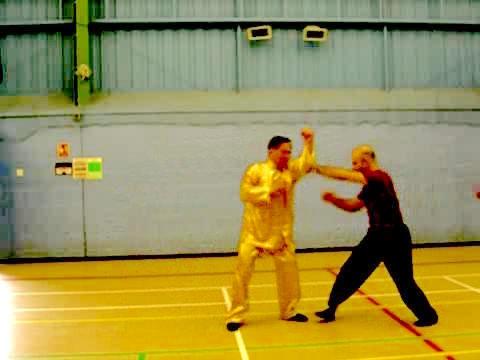 Shaolin Tantui at UK Summer Camp 2007 -- Part 30