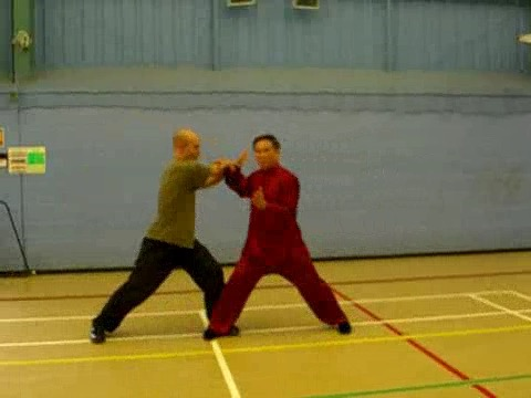 12 Combat Sequences of Shaolin Tantui