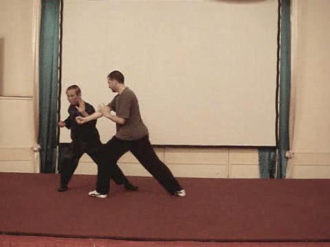 Taijiquan 12 Combat Sequences