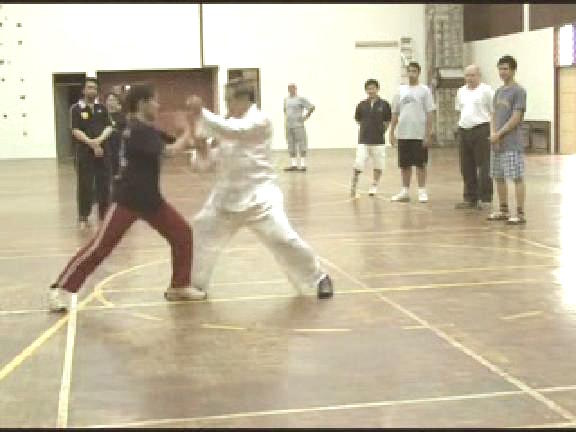 Shaolin 16 Combat Sequences