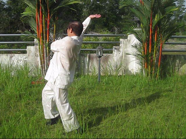 Baguazhang Swimming Dragon Set
