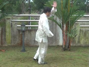 http://shaolin.org/video-clips-9/baguazhang/bg7.jpg Baguazhang