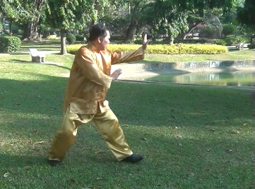 swimming dragon baguazhang set