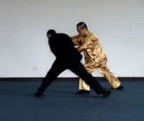 Counters against Throws in Taijiquan