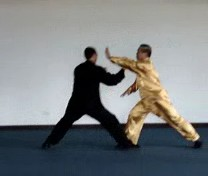 Taijiquan Green Dragon Shoots Pearl