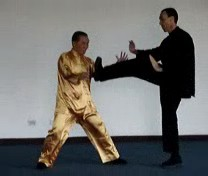 Counters against Kicks in Taijiquan