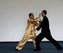 Taijiquan Counters against Strikes